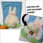 Bunny Poo Poo