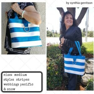 synthia's seat belt bag